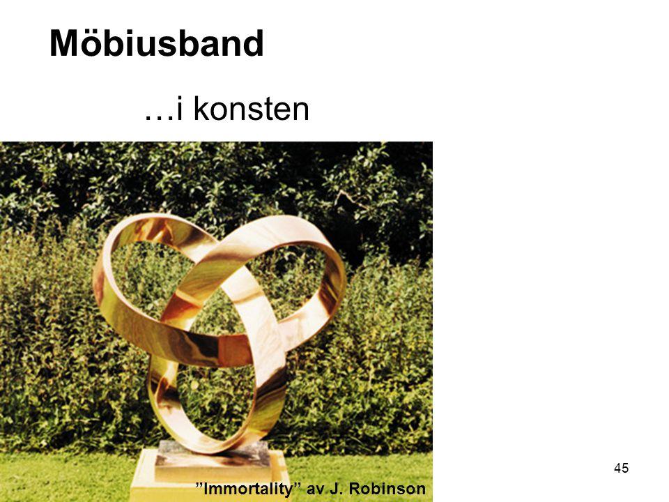 45 Möbiusband …i konsten Immortality av J. Robinson