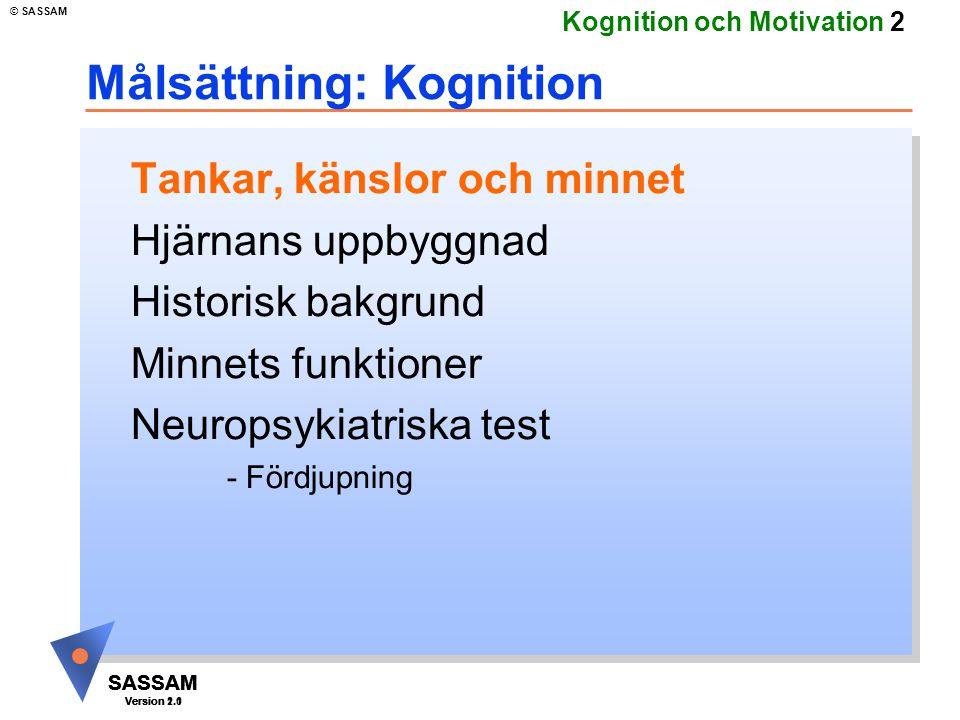 SASSAM Version 1.1 © SASSAM SASSAM Version 1.1 SASSAM Version 2.0 Kognition och Motivation 13 Utvecklingsteorier u Hjärnans uppbyggnad u Dynamisk utvecklingsteori i historiskt perspektiv u Nutida utvecklingsteori u Tankar, känslor, minnet u Neuropsykiatri u testning u undersökningar