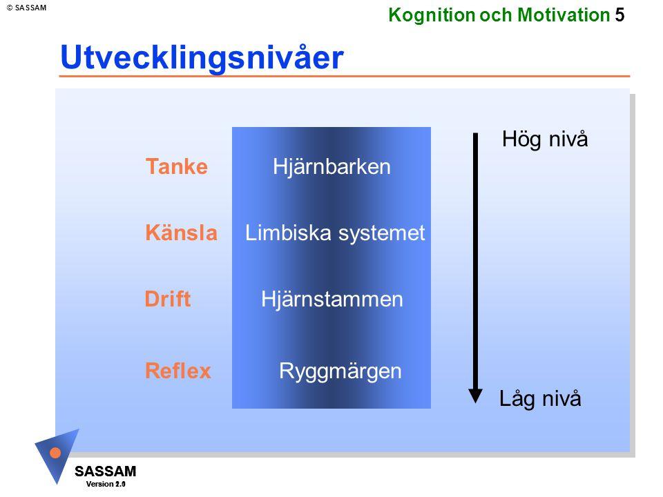 SASSAM Version 1.1 © SASSAM SASSAM Version 1.1 SASSAM Version 2.0 Kognition och Motivation 36 Motivation: Kompetens Hur ser jag på mina möjligheter att lyckas.
