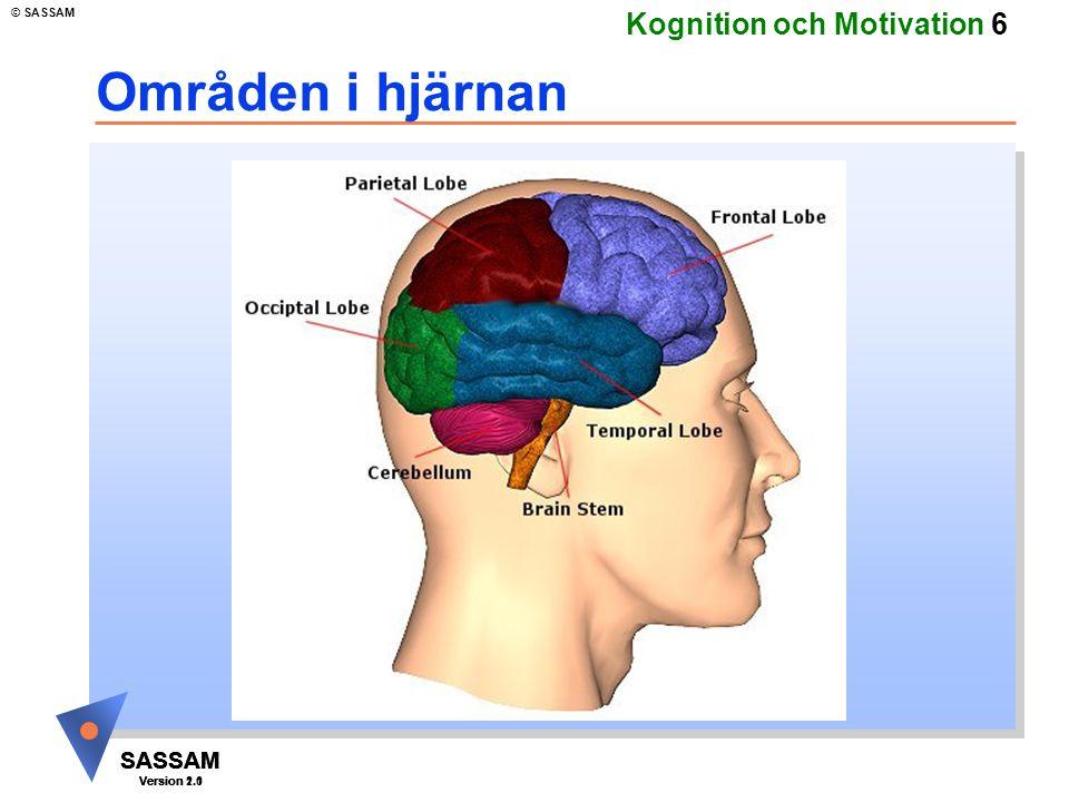 SASSAM Version 1.1 © SASSAM SASSAM Version 1.1 SASSAM Version 2.0 Kognition och Motivation 7 Hjärnstammen Lillhjärnan Hjärnstammen
