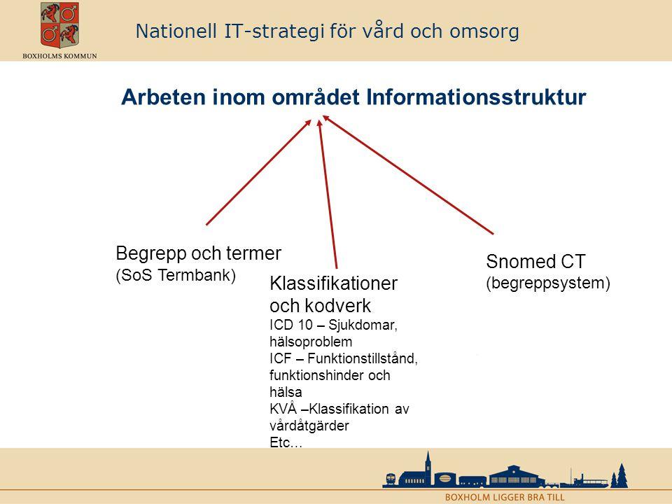 Nationell informationsstruktur –med utgångspunkt i processen ges den övergripande strukturen över vad som ska finnas i den ändamålsenliga dokumentationen inom vård och omsorg (SoS) Nationellt fackspråk för vård och omsorg – ger begrepp, termer och koder för att beskriva innehållet i vårdens och omsorgens dokumentation (SoS) Tillämpad informationsstruktur – utifrån Nationell Informationsstruktur och valda standarder utarbetas tillämpningar med begrepp, informationsmodeller, terminologier, kodverk och klassifikationer.