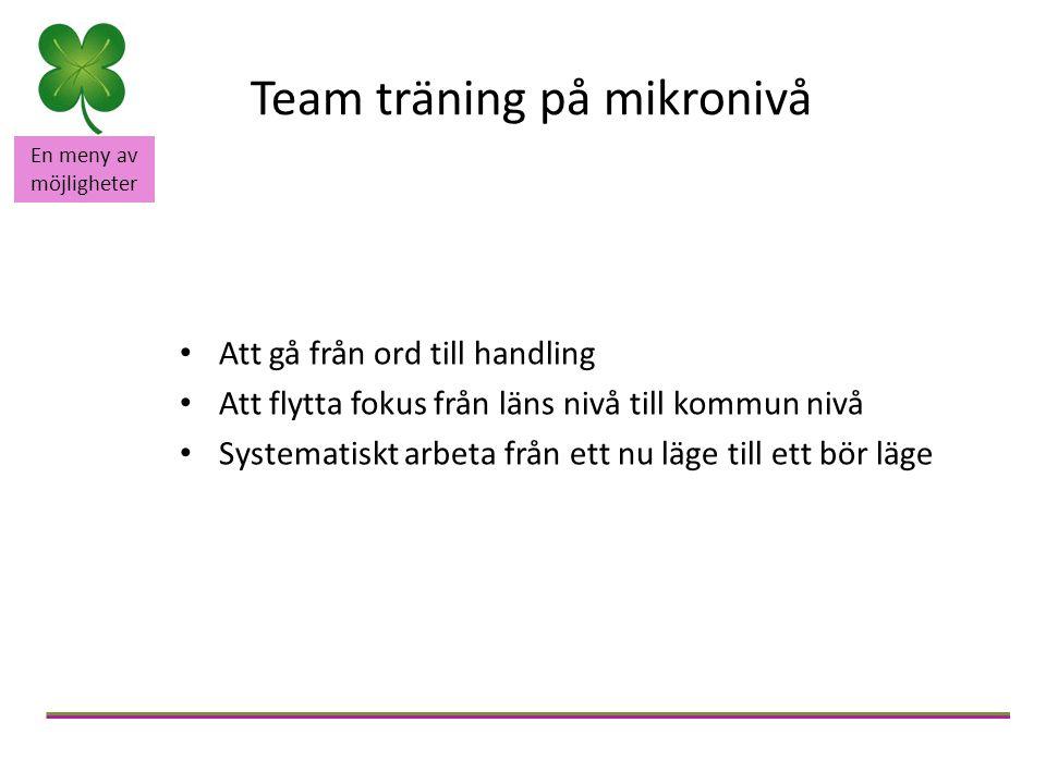 En meny av möjligheter Team träning på mikronivå Att gå från ord till handling Att flytta fokus från läns nivå till kommun nivå Systematiskt arbeta fr