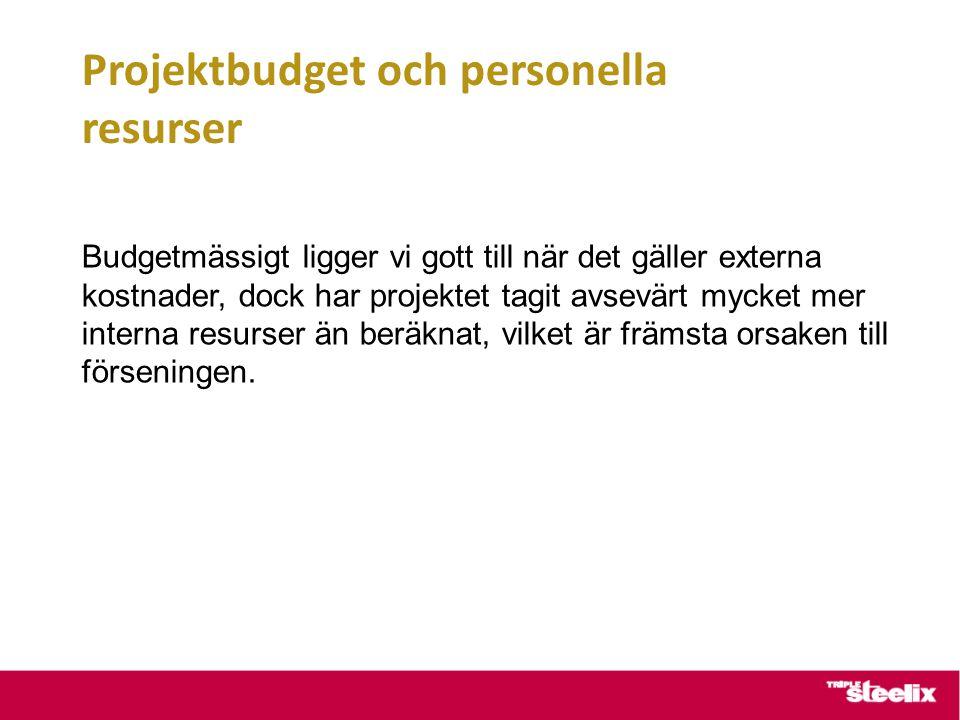 Projektbudget och personella resurser Budgetmässigt ligger vi gott till när det gäller externa kostnader, dock har projektet tagit avsevärt mycket mer interna resurser än beräknat, vilket är främsta orsaken till förseningen.