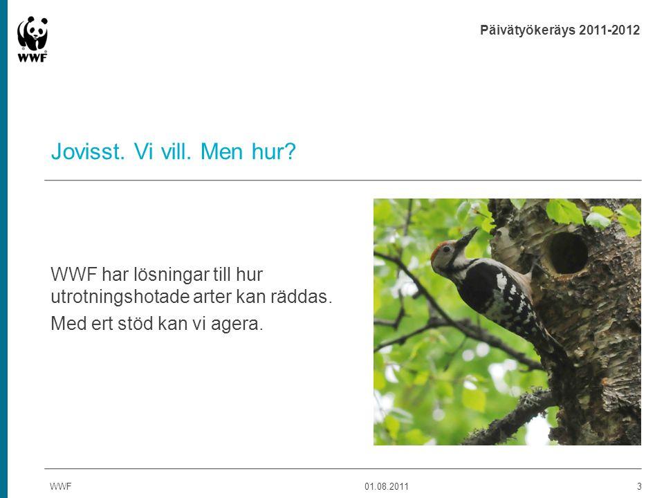 Päivätyökeräys 2011-2012 Järv - Akut hotad - Hot: fragmenterade levnadsområden och tjuvjakt - Broende av andra stora rovdjur, t.