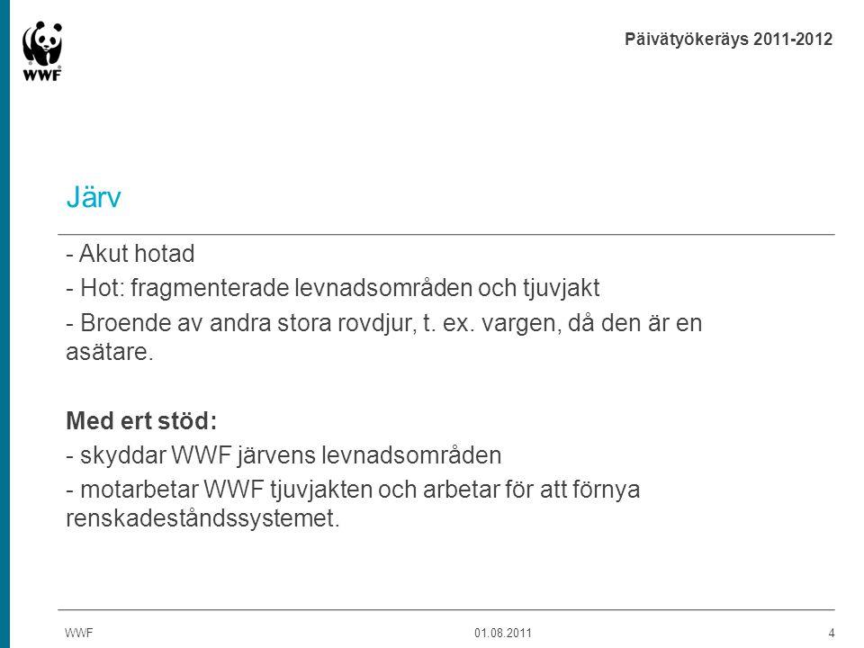 Päivätyökeräys 2011-2012 Vitryggig hackspett - Starkt hotad - Hot: de gamla lövträdsdominerade skogarnas försvinnande till förmån för ekonomiskogar.