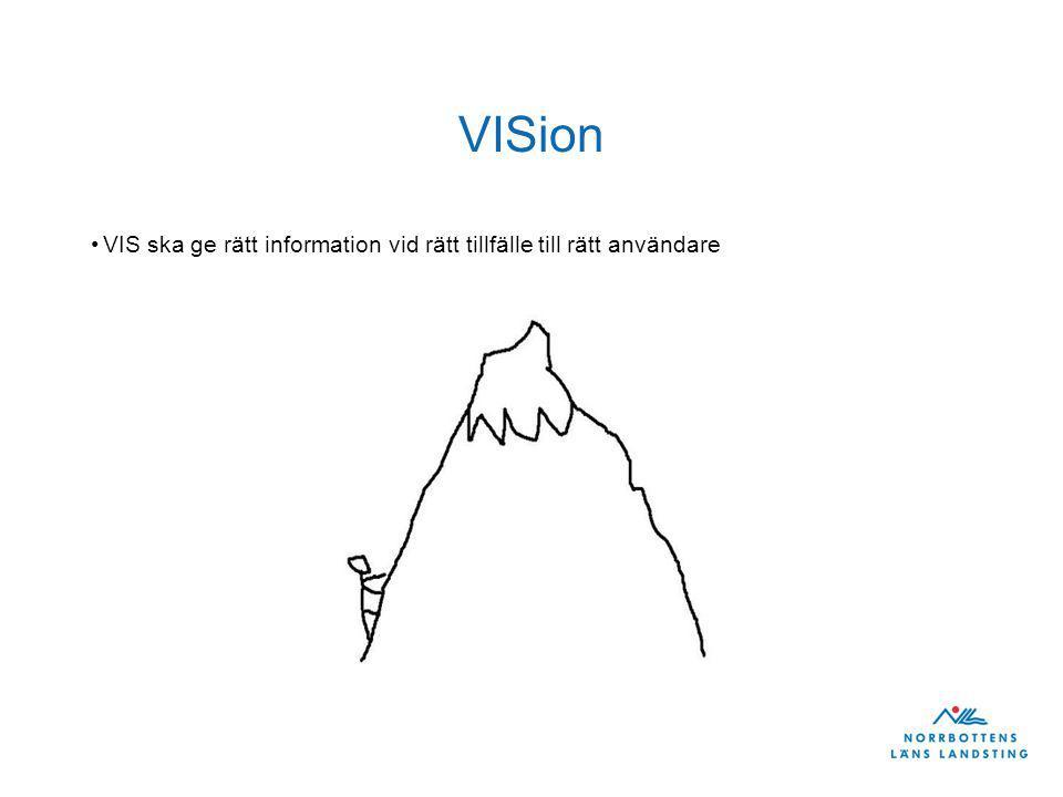 VISion VIS ska ge rätt information vid rätt tillfälle till rätt användare