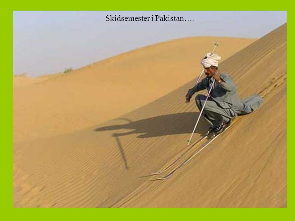 Skidsemester i Pakistan….