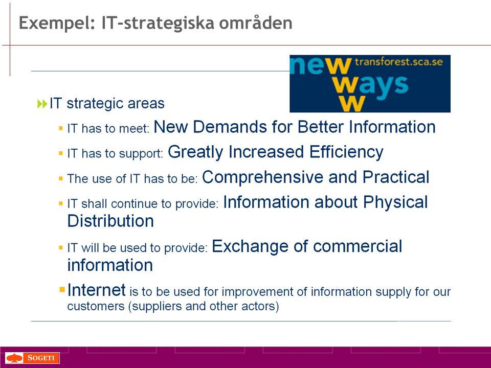 Exempel: IT-strategiska områden