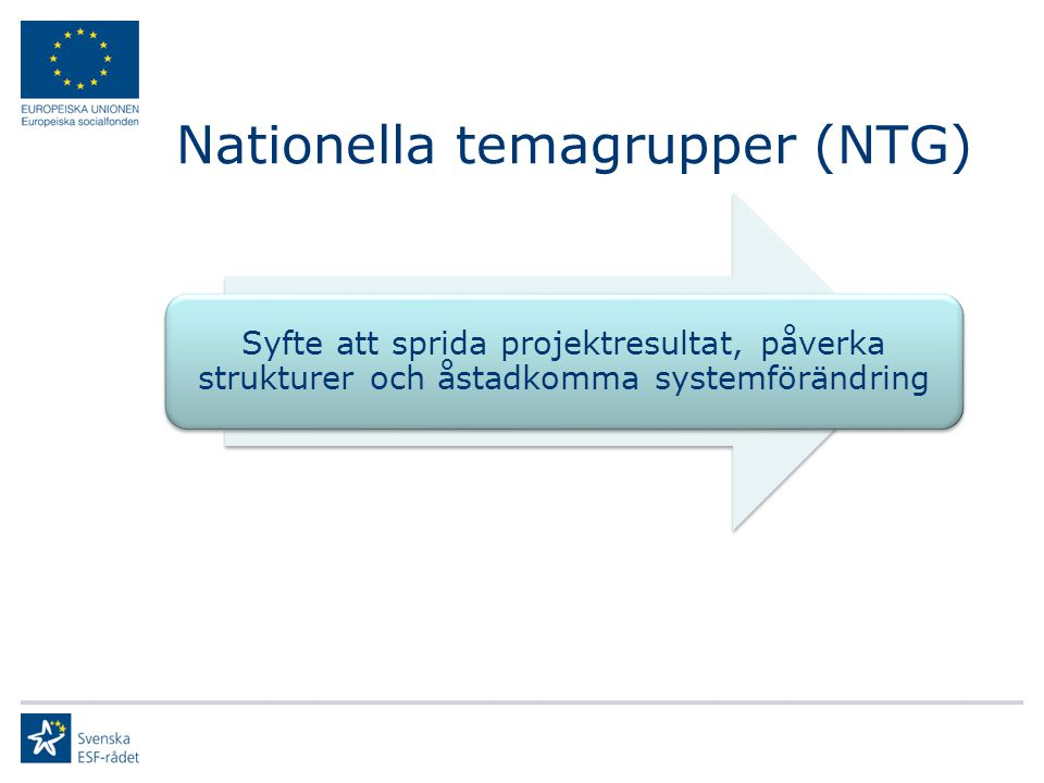 Nationella temagrupper (NTG) Syfte att sprida projektresultat, påverka strukturer och åstadkomma systemförändring