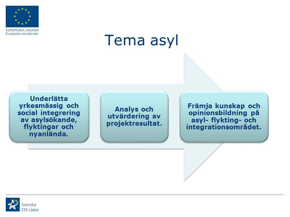 Tema asyl Underlätta yrkesmässig och social integrering av asylsökande, flyktingar och nyanlända. Analys och utvärdering av projektresultat. Främja ku