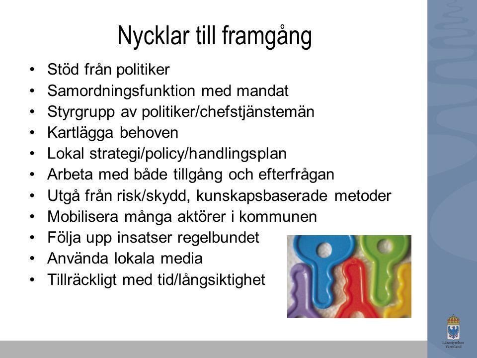 Nycklar till framgång Stöd från politiker Samordningsfunktion med mandat Styrgrupp av politiker/chefstjänstemän Kartlägga behoven Lokal strategi/polic