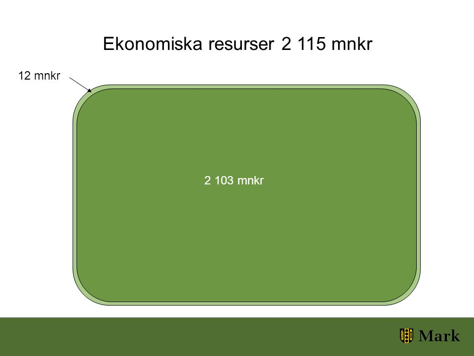 Ekonomiska resurser 2 115 mnkr 12 mnkr 2 103 mnkr