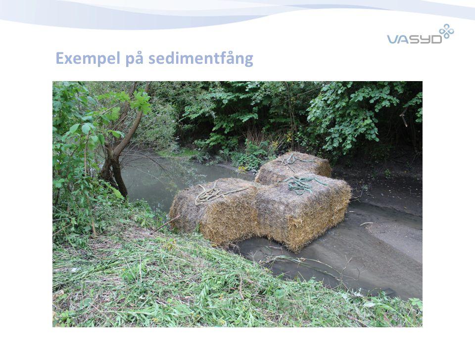 Exempel på sedimentfång