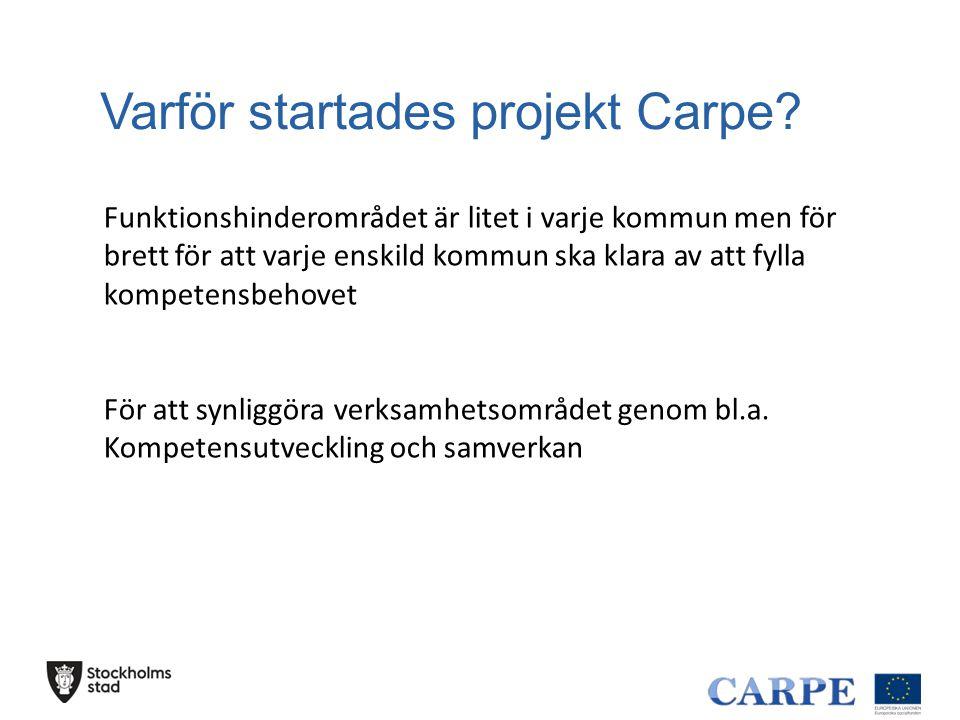 Varför startades projekt Carpe? Funktionshinderområdet är litet i varje kommun men för brett för att varje enskild kommun ska klara av att fylla kompe