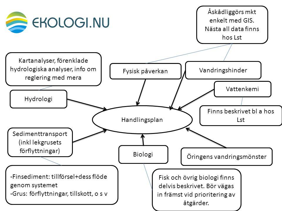 Hydrologi Fysisk påverkan Vandringshinder Biologi Handlingsplan Öringens vandringsmönster Sedimenttransport (inkl lekgrusets förflyttningar) Kartanaly