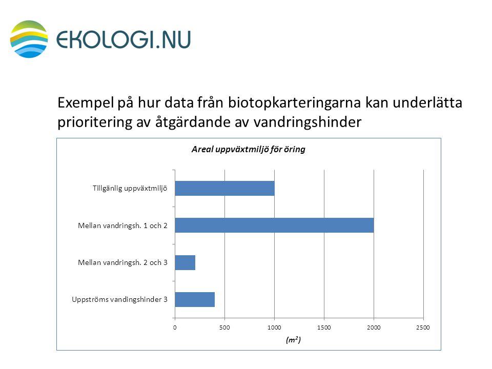 Exempel på hur data från biotopkarteringarna kan underlätta prioritering av åtgärdande av vandringshinder
