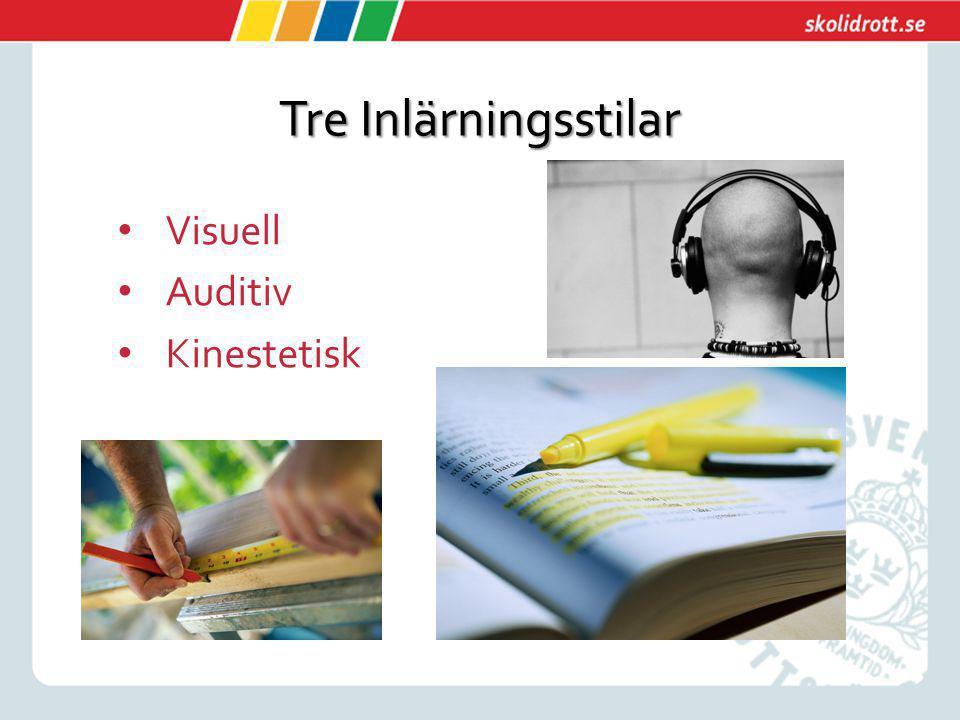 Tre Inlärningsstilar Visuell Auditiv Kinestetisk