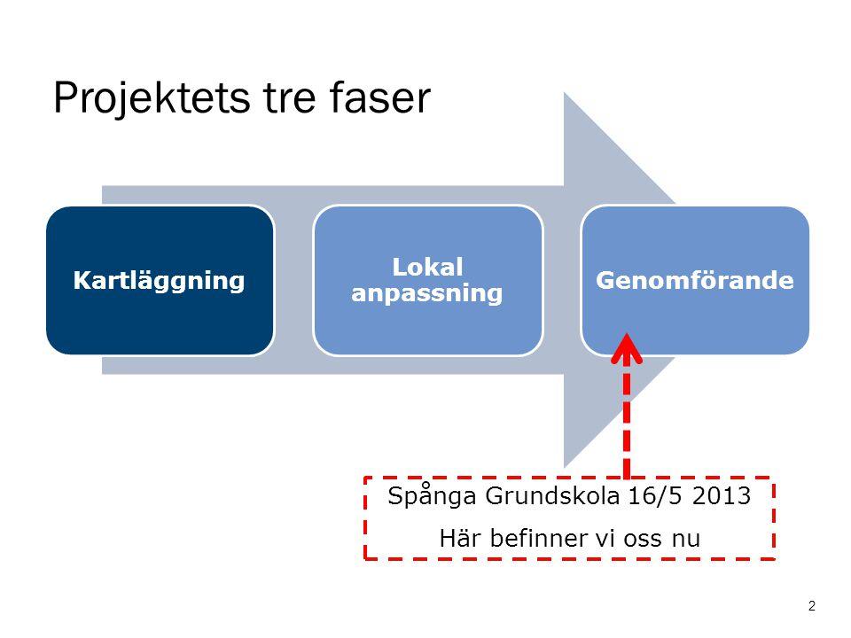 Projektets tre faser Kartläggning Lokal anpassning Genomförande 2 Spånga Grundskola 16/5 2013 Här befinner vi oss nu