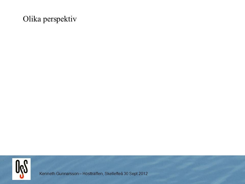 Kenneth Gunnarsson – Höstträffen, Skellefteå 30 Sept 2012 Olika perspektiv