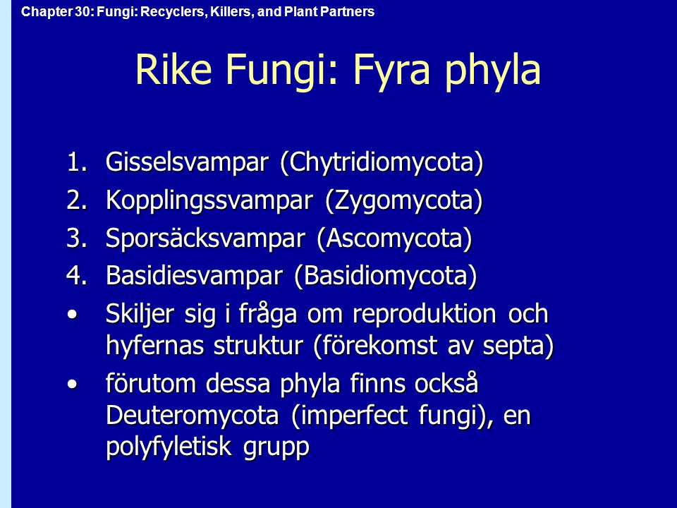 Chapter 30: Fungi: Recyclers, Killers, and Plant Partners Rike Fungi: Fyra phyla 1.Gisselsvampar (Chytridiomycota) 2.Kopplingssvampar (Zygomycota) 3.S