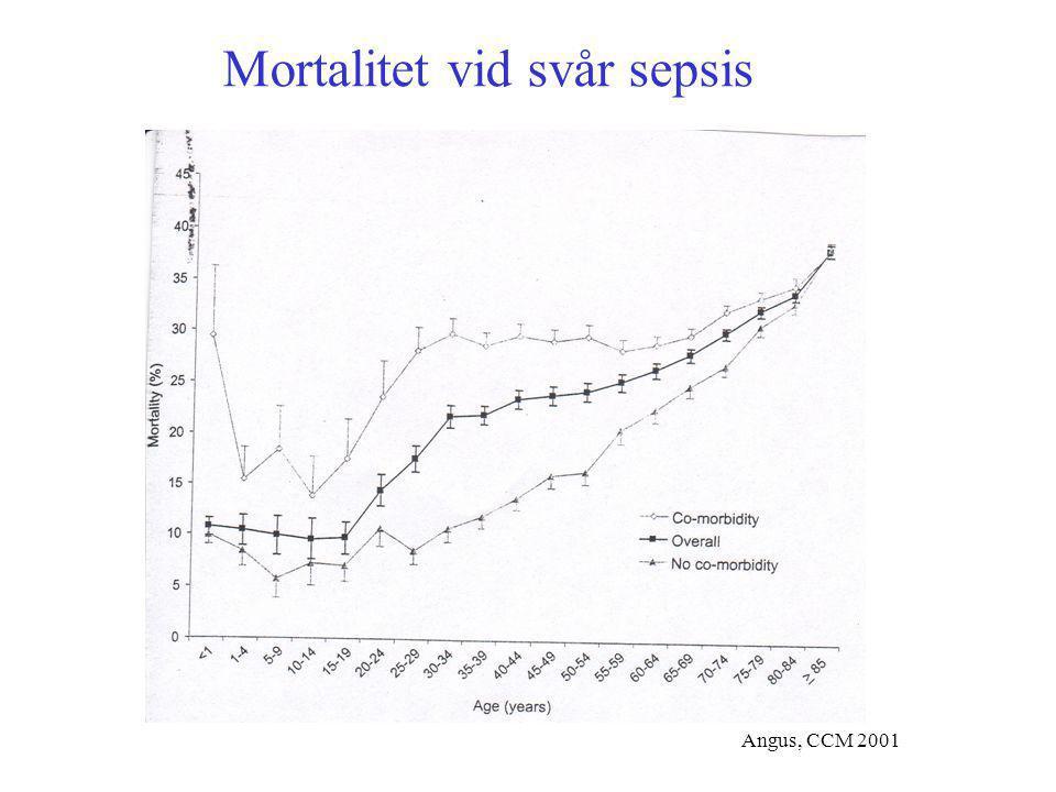 Angus, CCM 2001 Mortalitet vid svår sepsis
