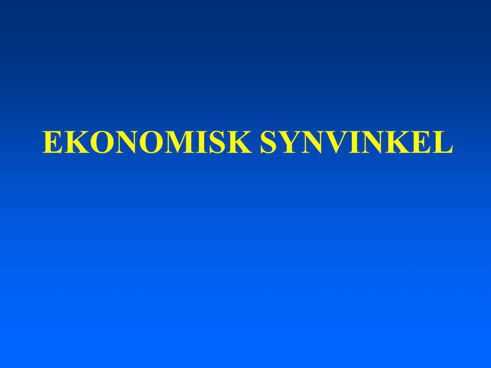 EKONOMISK SYNVINKEL