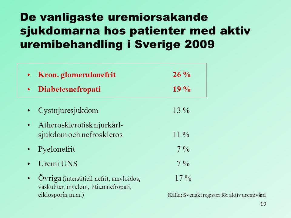 10 Kron. glomerulonefrit 26 % Diabetesnefropati19 % Cystnjuresjukdom 13 % Atherosklerotisk njurkärl- sjukdom och nefroskleros 11 % Pyelonefrit 7 % Ure