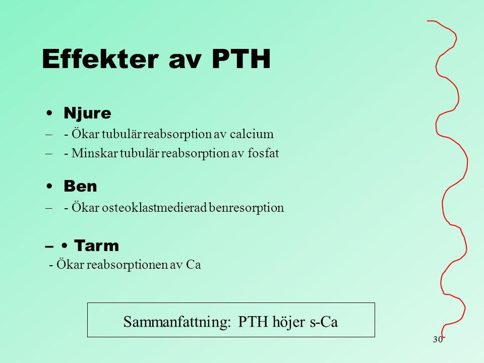 30 Effekter av PTH Njure – - Ökar tubulär reabsorption av calcium – - Minskar tubulär reabsorption av fosfat Ben – - Ökar osteoklastmedierad benresorp