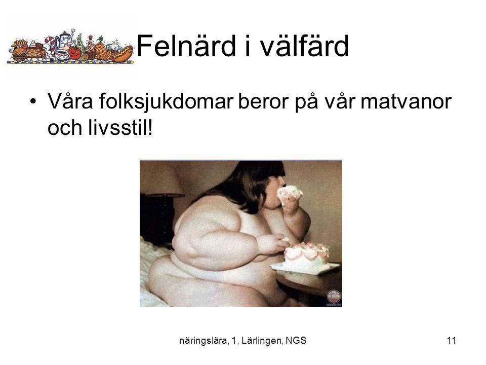 näringslära, 1, Lärlingen, NGS11 Felnärd i välfärd Våra folksjukdomar beror på vår matvanor och livsstil!
