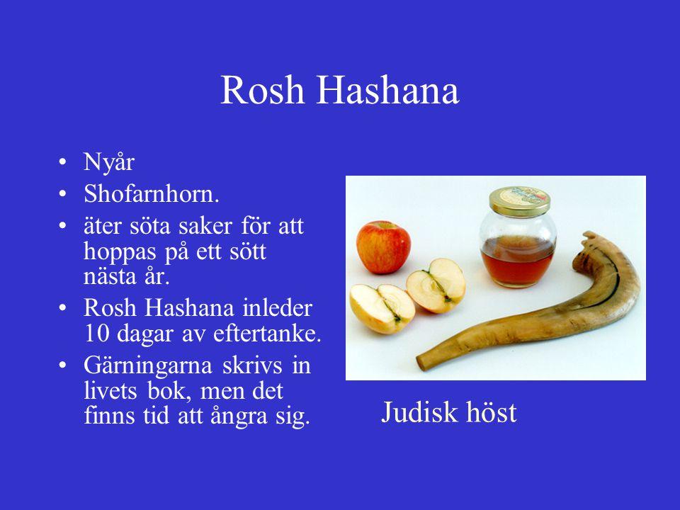 Rosh Hashana Nyår Shofarnhorn. äter söta saker för att hoppas på ett sött nästa år. Rosh Hashana inleder 10 dagar av eftertanke. Gärningarna skrivs in
