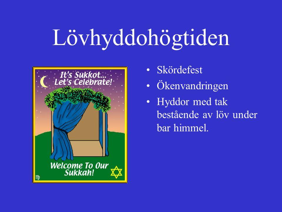 Lövhyddohögtiden Skördefest Ökenvandringen Hyddor med tak bestående av löv under bar himmel.