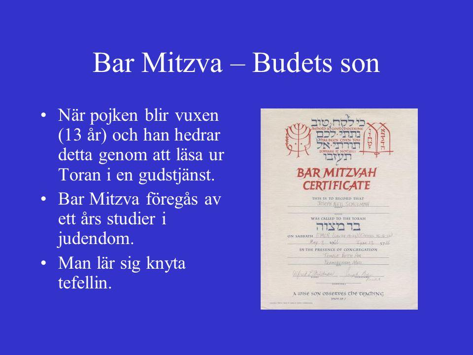 Bar Mitzva – Budets son När pojken blir vuxen (13 år) och han hedrar detta genom att läsa ur Toran i en gudstjänst. Bar Mitzva föregås av ett års stud