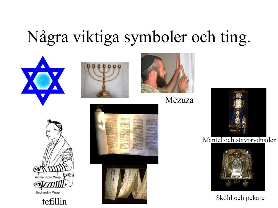 Några viktiga symboler och ting. Mezuza tefillin Sköld och pekare Mantel och stavprydnader
