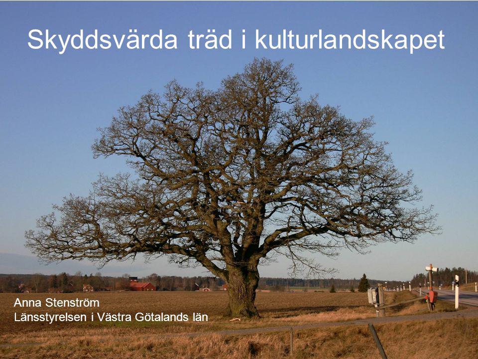 Skyddsvärda träd i kulturlandskapet Anna Stenström Länsstyrelsen i Västra Götalands län