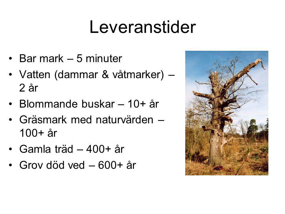 Leveranstider Bar mark – 5 minuter Vatten (dammar & våtmarker) – 2 år Blommande buskar – 10+ år Gräsmark med naturvärden – 100+ år Gamla träd – 400+ år Grov död ved – 600+ år