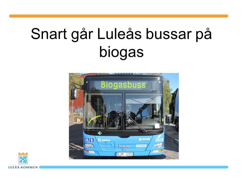 Snart går Luleås bussar på biogas