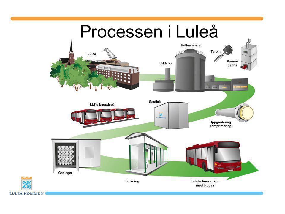 Processen i Luleå