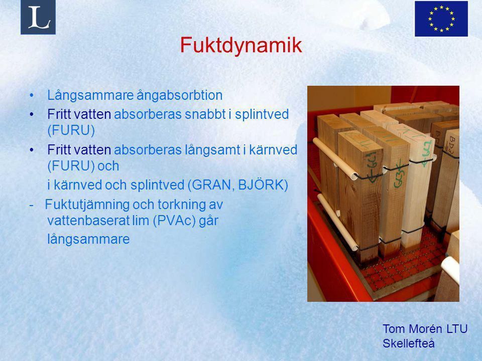 Tom Morén LTU Skellefteå Fuktdynamik Långsammare ångabsorbtion Fritt vatten absorberas snabbt i splintved (FURU) Fritt vatten absorberas långsamt i kärnved (FURU) och i kärnved och splintved (GRAN, BJÖRK) - Fuktutjämning och torkning av vattenbaserat lim (PVAc) går långsammare
