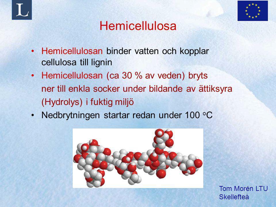 Tom Morén LTU Skellefteå Hemicellulosa Hemicellulosan binder vatten och kopplar cellulosa till lignin Hemicellulosan (ca 30 % av veden) bryts ner till