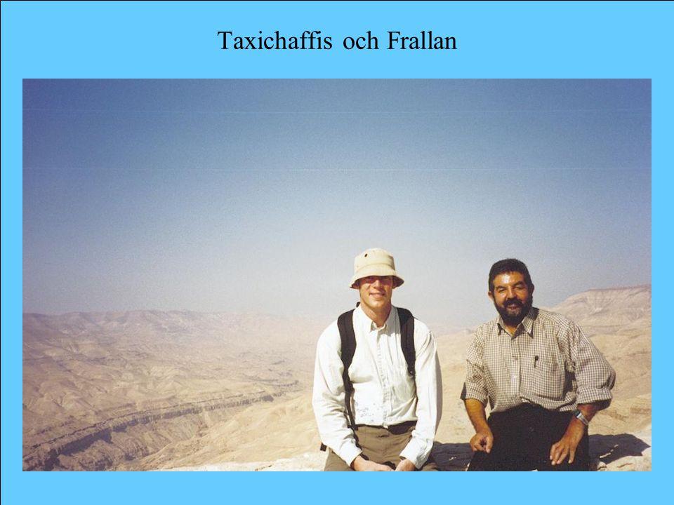 Taxichaffis och Frallan
