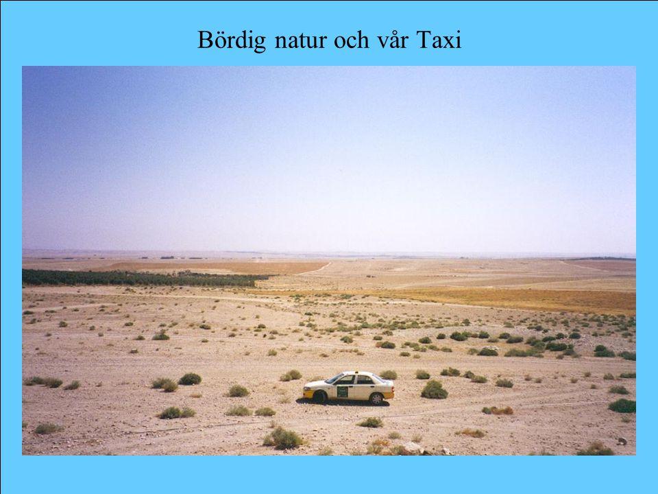 Bördig natur och vår Taxi