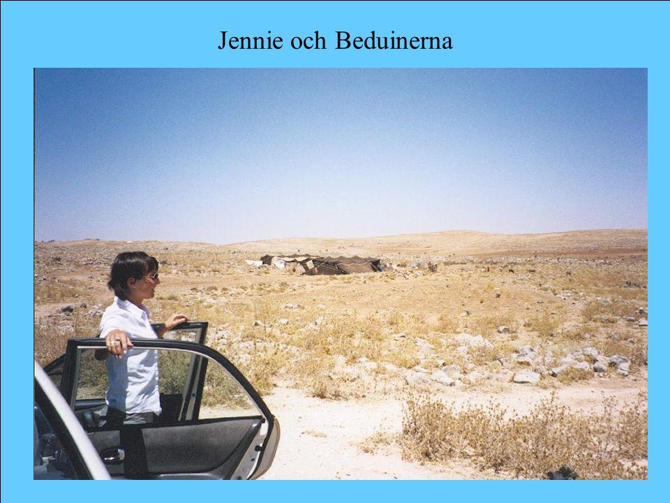 Jennie och Beduinerna