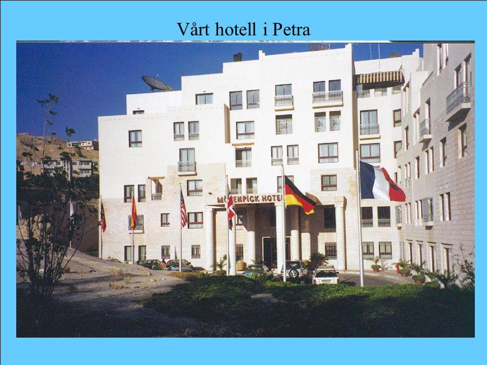 Vårt hotell i Petra