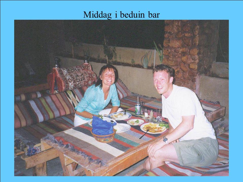 Middag i beduin bar