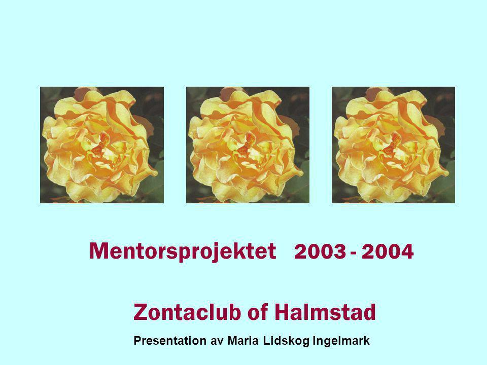 Mentorsprojektet 2003 - 2004 Zontaclub of Halmstad Presentation av Maria Lidskog Ingelmark
