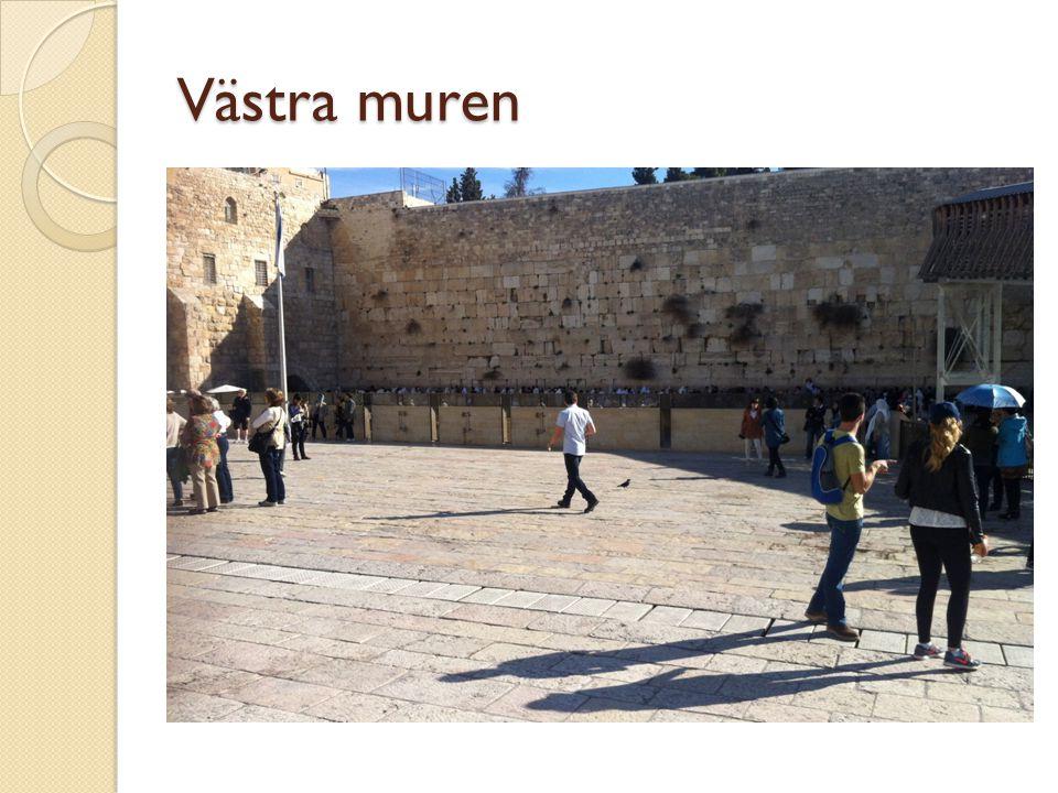 Västra muren