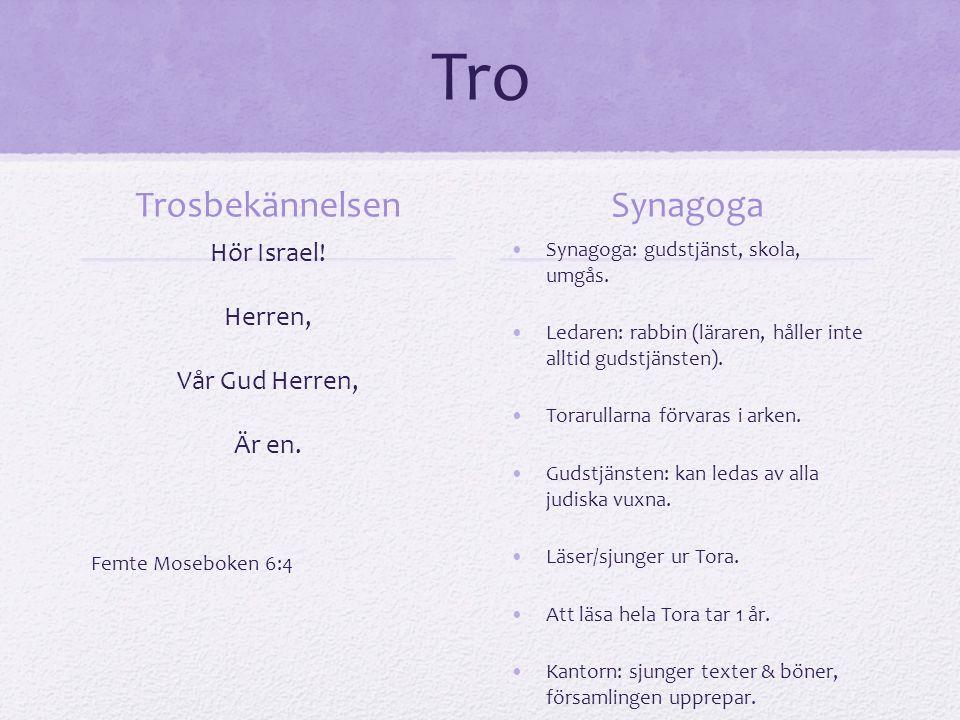 Att leva som jude Många av reglerna kommer från Gamla Testamentet (GT).