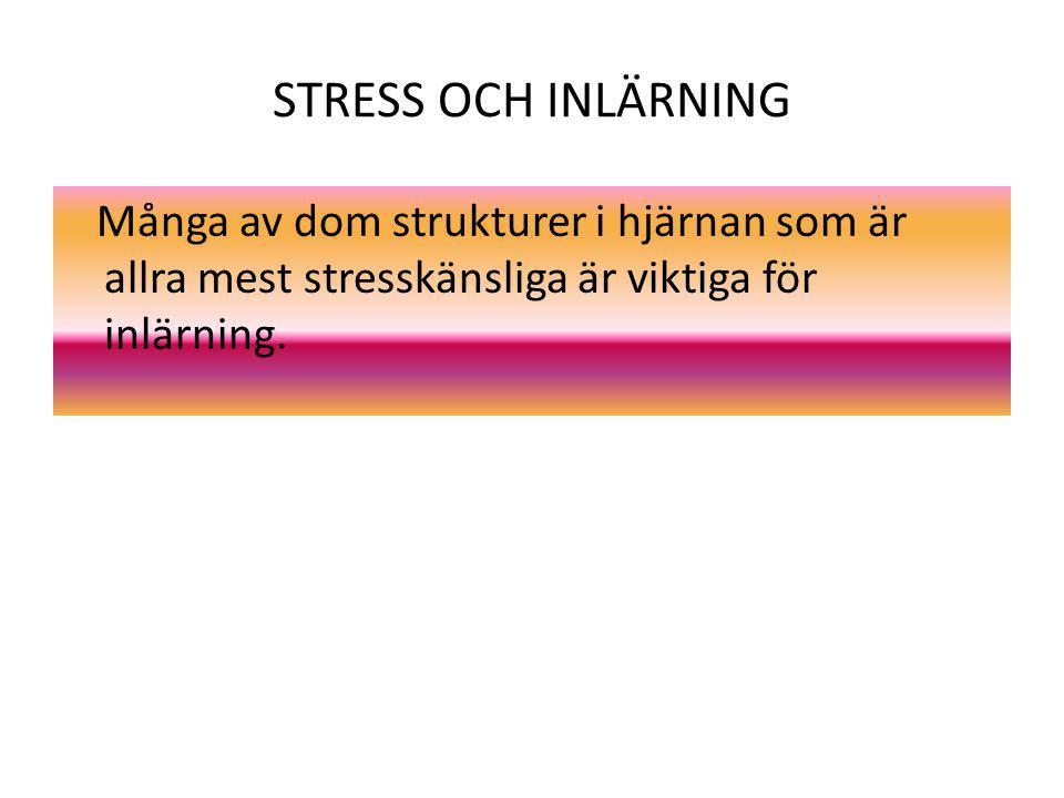 STRESS OCH INLÄRNING Många av dom strukturer i hjärnan som är allra mest stresskänsliga är viktiga för inlärning.