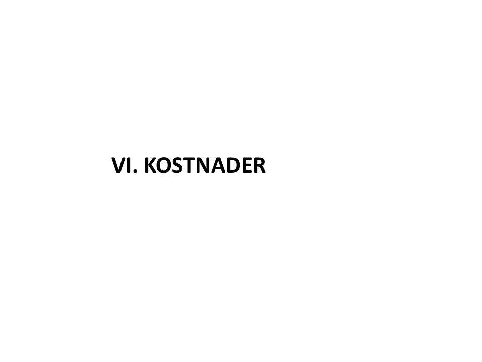 VI. KOSTNADER