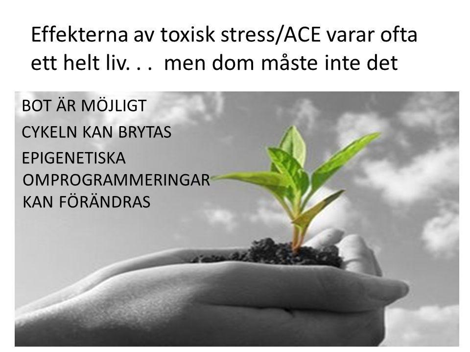 Effekterna av toxisk stress/ACE varar ofta ett helt liv... men dom måste inte det BOT ÄR MÖJLIGT CYKELN KAN BRYTAS EPIGENETISKA OMPROGRAMMERINGAR KAN